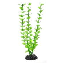 Бакопа зеленая BARBUS Plant 010 10 см