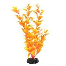 Людвигия оранжевая BARBUS Plant 011 30 см