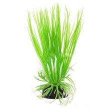 Акорус зеленый BARBUS Plant 007 20 см