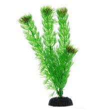 Амбулия зеленая BARBUS Plant 002 30 см