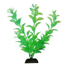 BARBUS Plant 057 светится в темноте 20 см