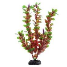Людвигия ползучая красная BARBUS Plant 022 30 см