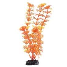 Кабомба оранжевая BARBUS Plant 021 20 см