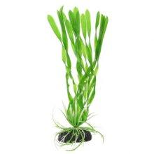 Валиснерия спиральная зеленая BARBUS Plant 014 10 см